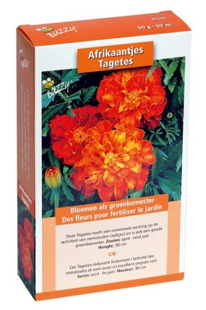 Tagetes seeds 50m2 green...
