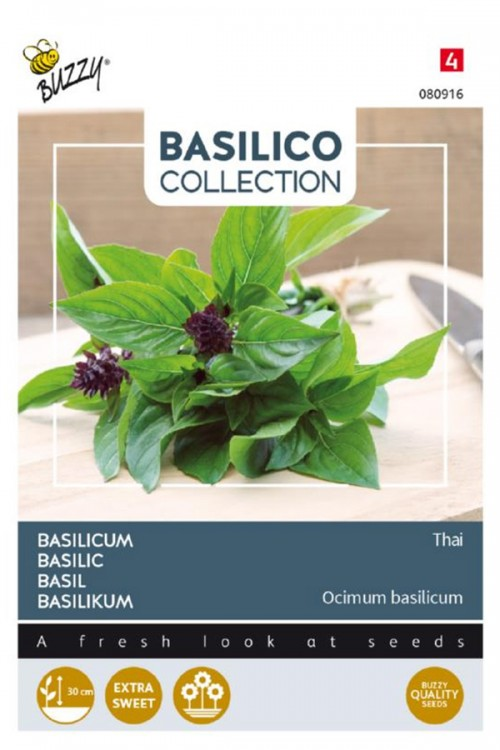 Thai Siam Basilicum zaden