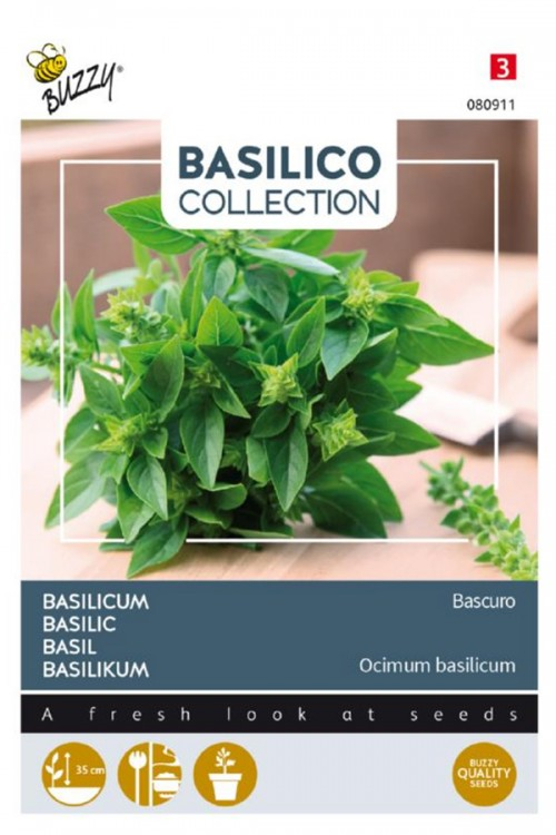 Bascuro Greek Sweet Basil seeds