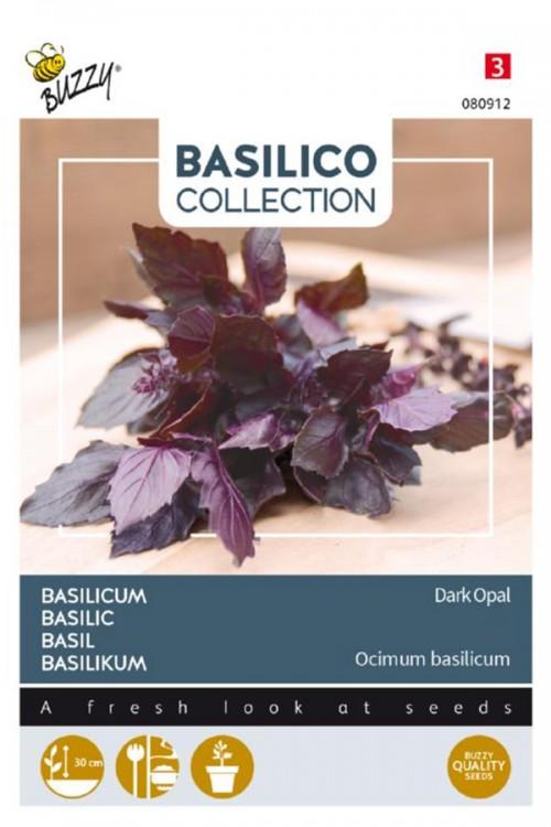 Violetto Aromatico - Dark Opal Basilicum zaden