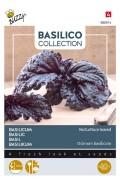 A Foglie Violetta di Lattuga Basilicum