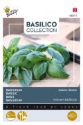 Italiano Classico - Genovese Basilicum zaden
