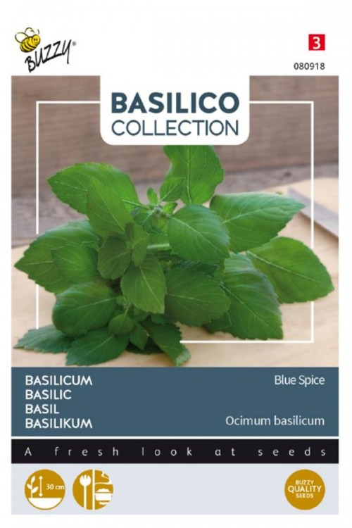 Blue Spice Basil