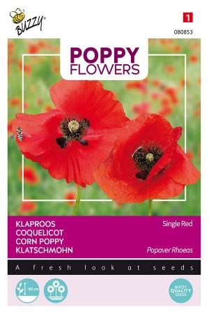 Single Red Klaproos -...