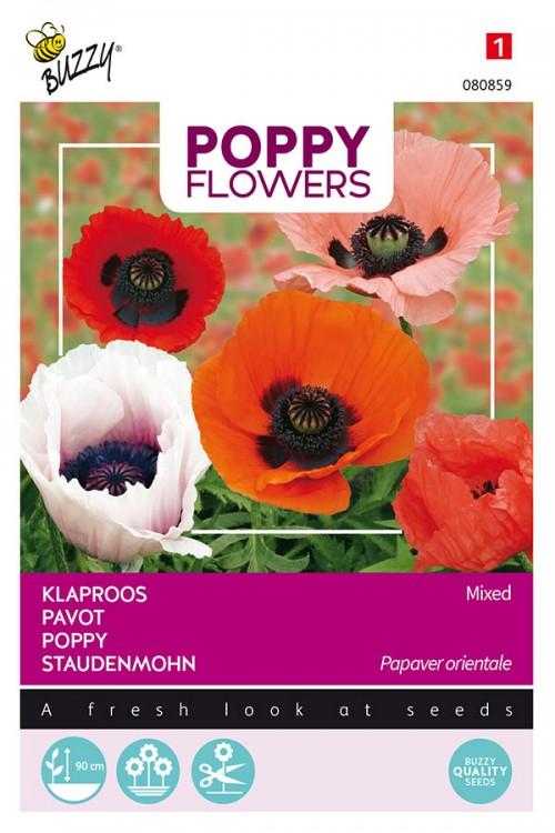 Oriental Poppy - Papaver orientale seeds