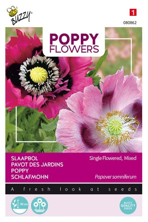 Somniferum Papaver seeds