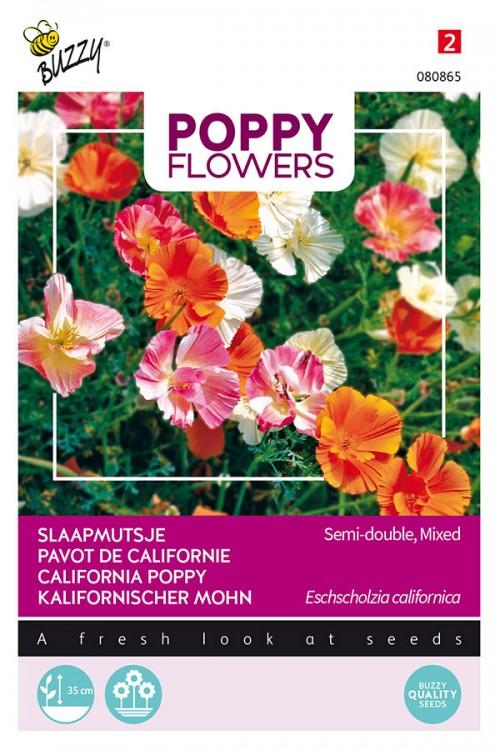 Double Californian Poppy Eschscholzia seeds