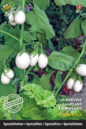 White Eggs - Aubergine