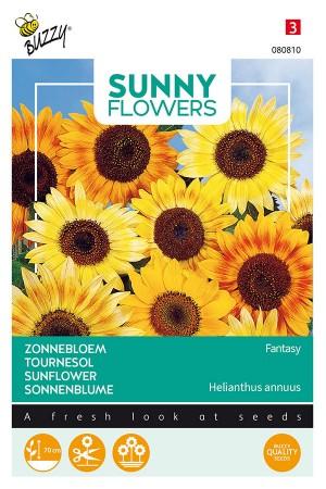 Fantasy - Sunflower
