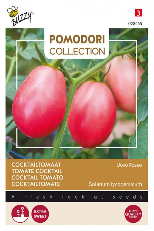 Pink Thai Egg Tomaat