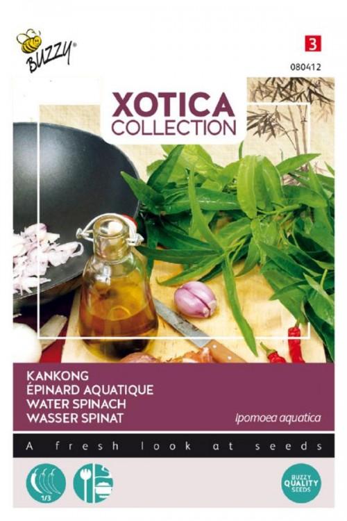 Kankong Dagoeblad Waterspinazie zaden