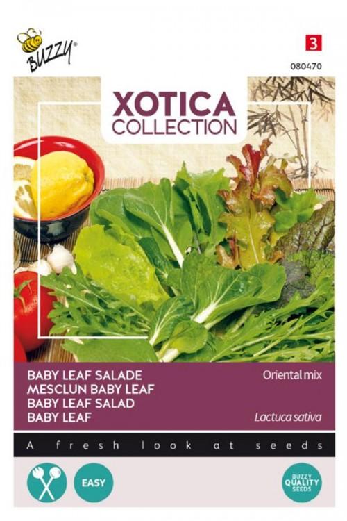 Salade Oriental - Baby Leaf Mix