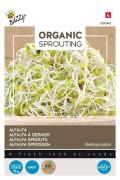Alfalfa - Organic Sprouting
