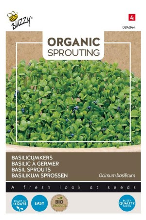 Basil Sprouts Organic