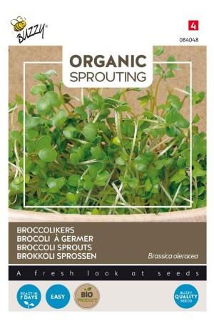 Broccoli Organic Sprouting...