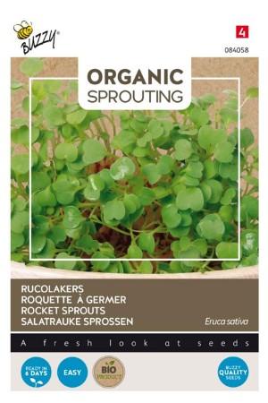 Rocket Organic Sprouting seeds
