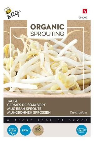 Mung Beans Organic