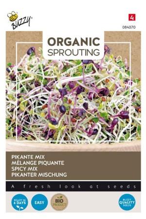 Spicy Mix Organic