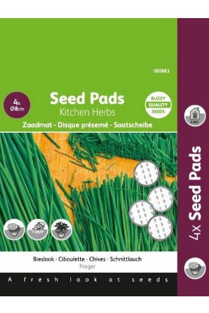 Bieslook Prager - Seedpads