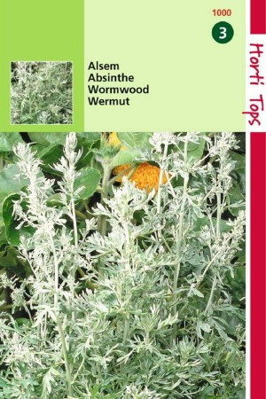 Wormwood - Absinthe seeds