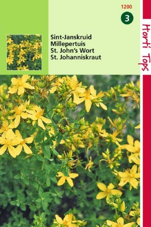St. Johns Wort seeds