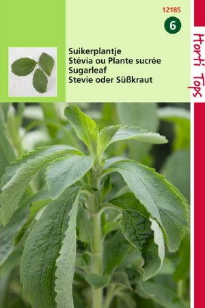 Sugarleaf - Stevia seeds