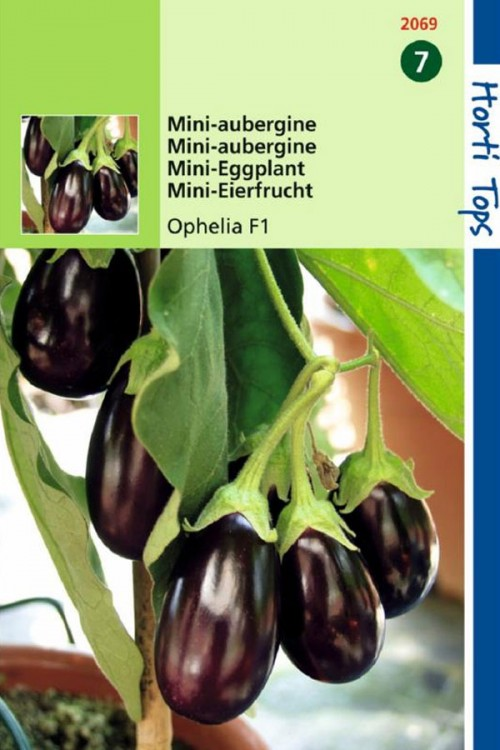 Ophelia F1 - Mini Eggplant