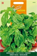 Large Leaved Sweet Basil seeds