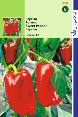 Solero F1 - Paprika