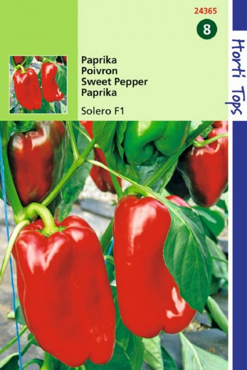 Solero F1 - Rode Paprika