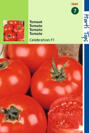 Celebration F1 - Tomaat