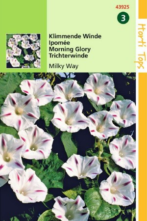 Milkyway - Klimmende Winde