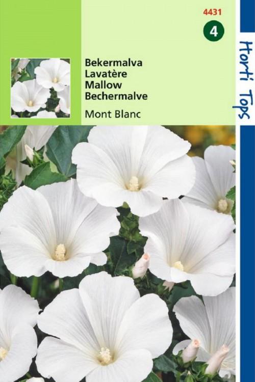 Mont Blanc - Bekermalva