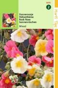 Zonneroosje Helianthemum zaden