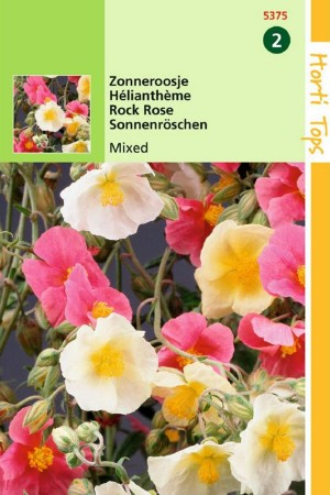 Rock rose Helianthemum seeds