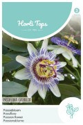 Passiebloem - Passiflora