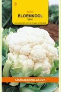 Igloo - Bloemkool