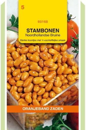 Bruine Noordhollandse -...