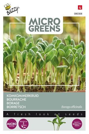 Komkommerkruid - Microgreens