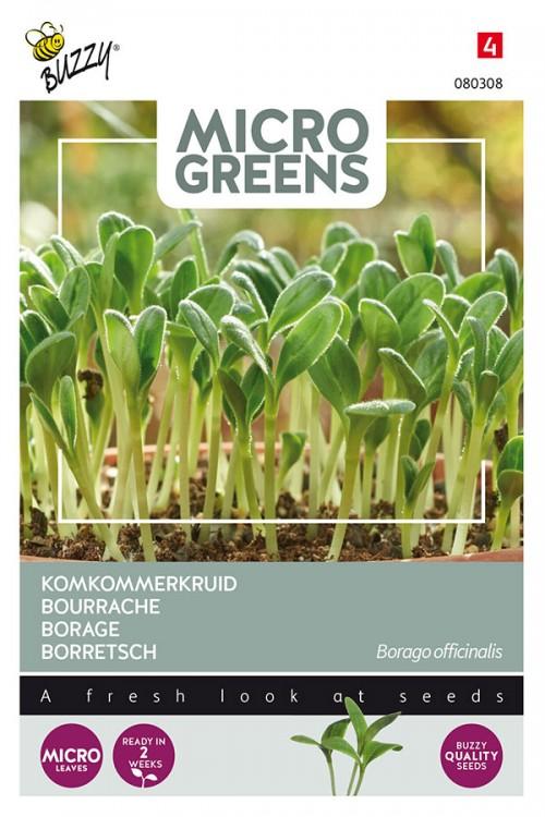 Borage - Microgreens