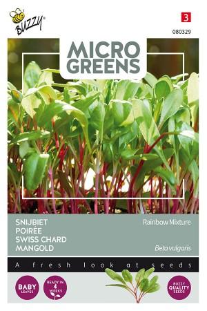 Swiss chard - Microgreens