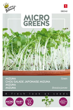 Mizuna Green - Microgreens