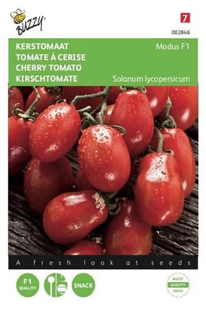 Modus F1 - Tomato