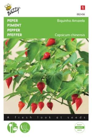 Biquinho - Pepper