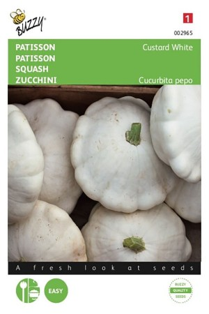 Custard White patisson seeds