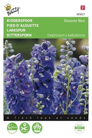 Dasante Blue Delphinium -...