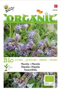 Phacelia - Organic