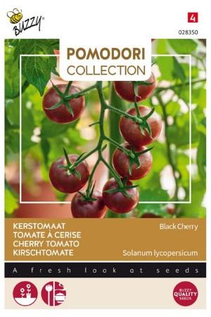 Black Cherry - Tomato