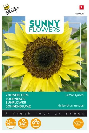 Lemon Queen Sunflower...