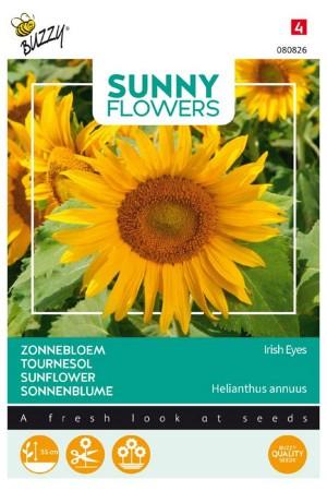 Irish Eyes - Sunflower